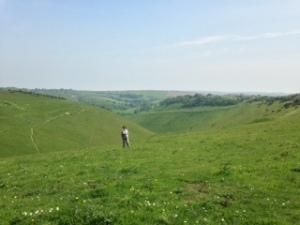 The South Downs near Devils Dyke, Sussex.