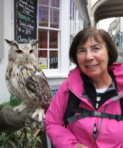 The owl in Totnes.